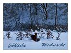 fröhliche weihnacht....