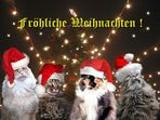 Fröhliche Weihnachten ...
