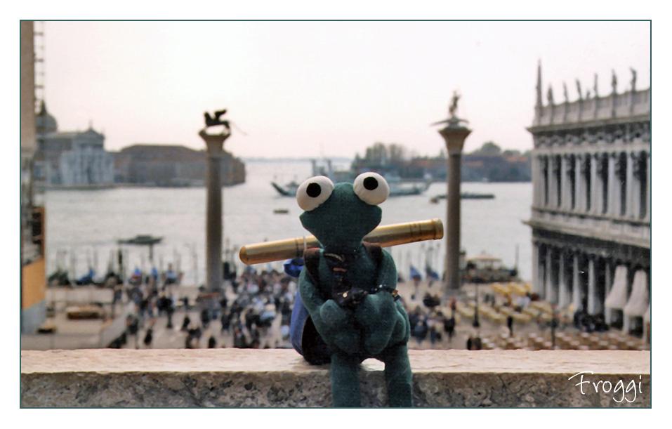 Froggi am Markusdom
