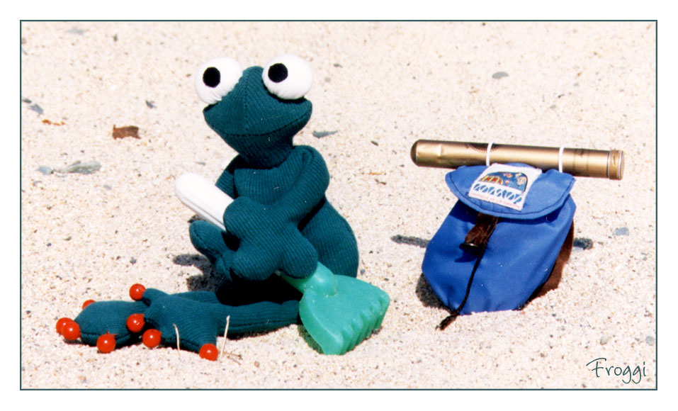 Froggi am Strand