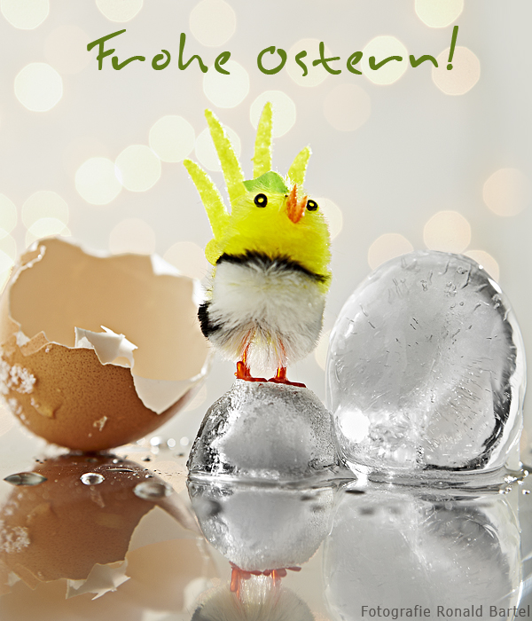 Frohe Ostern 2013