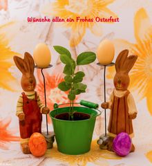 Frohe Ostern 2019 (1)