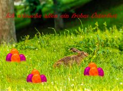 Frohe Ostern 2020 (1)