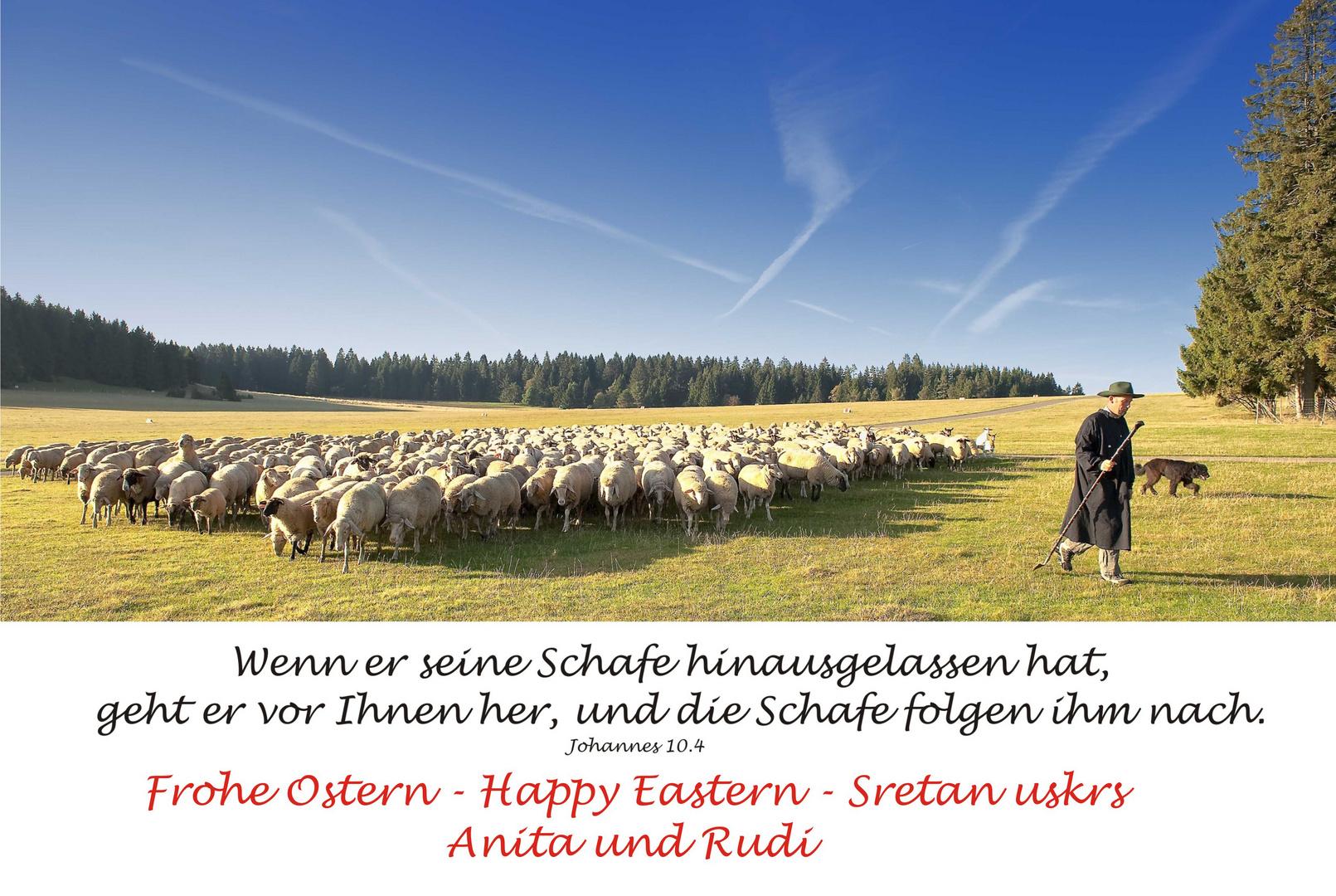 Frohe Ostern - allen Mitgliedern der fc
