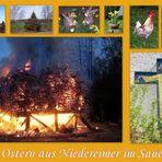 Frohe Ostern aus Arnsberg - Niedereimer im Sauerland