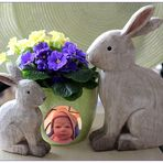 Frohe Ostern .........