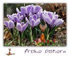 frohe Ostern für euch alle
