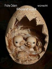 Frohe Ostern und danke für die vielen lieben Anmerkungen