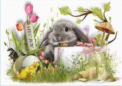 Frohe Ostern wünsche ich allen von ganzem Herzen