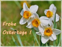 Frohe Ostertage ...