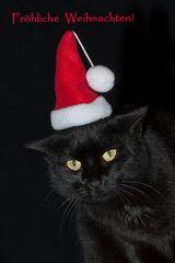 Frohe und besinnliche Weihnachtsfeiertage!