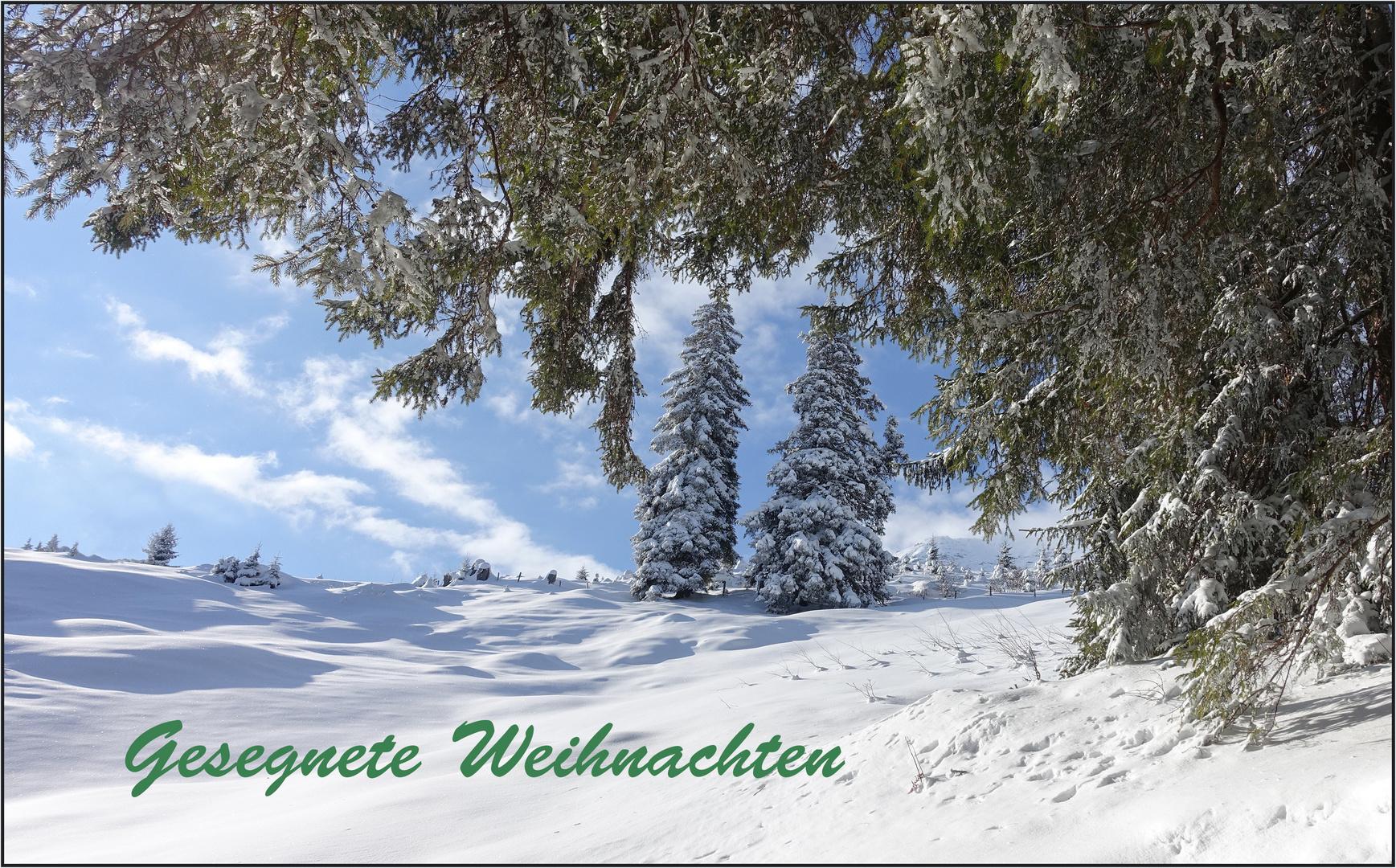 Frohe und gesegnete Weihnachten Foto & Bild | spezial, winter, licht ...