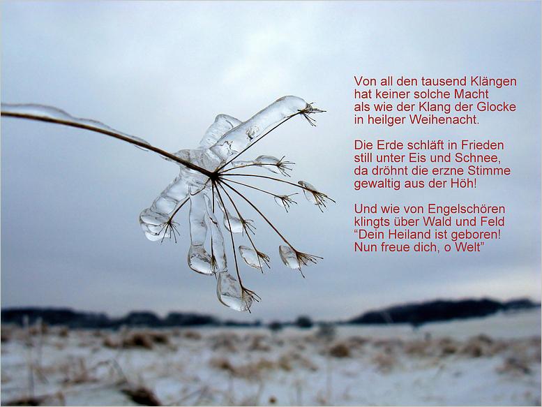 Frohe Weihnacht Foto & Bild | karten und kalender, weihnachtskarten ...