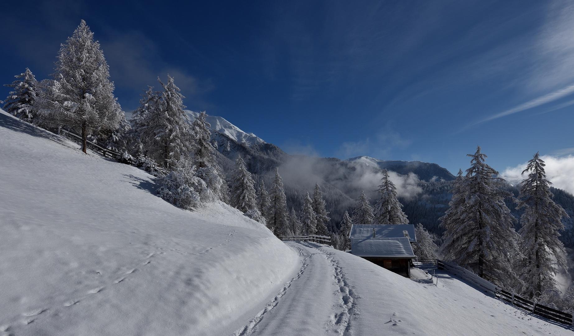 Frohe Weihnachten Schweiz.Frohe Weihnachten Foto Bild Europe Schweiz