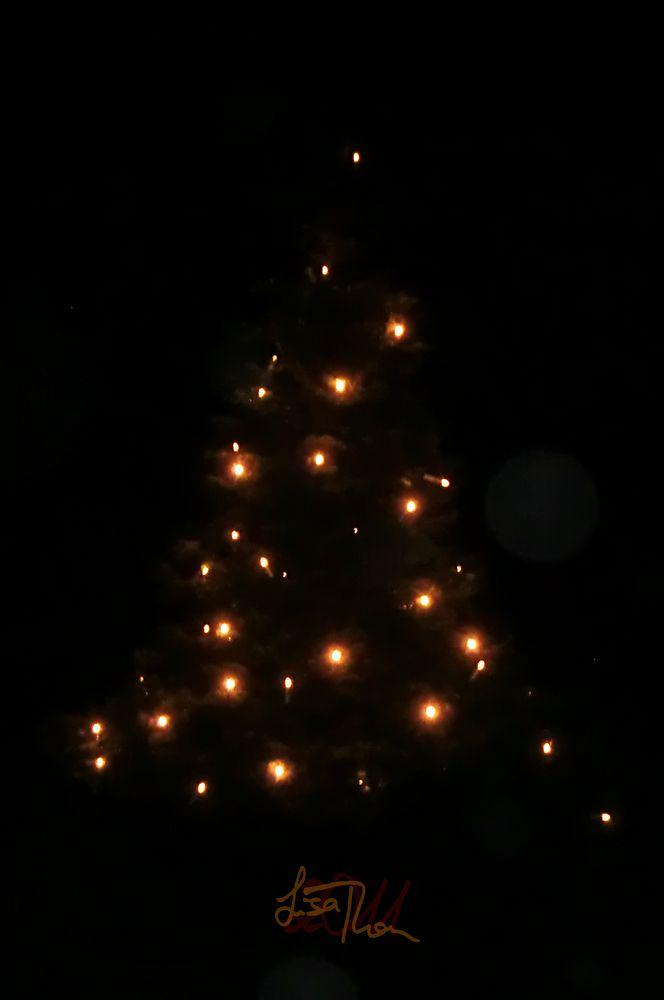 Frohe Weihnachten An Alle.Frohe Weihnachten An Alle Foto Bild Gratulation Und
