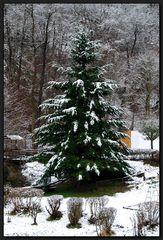 ...Frohe Weihnachten...
