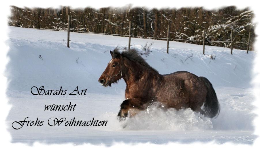 Frohe Weihnachten Pferd.Frohe Weihnachten Foto Bild Tiere Haustiere Pferde Esel