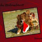 Frohe Weihnachten!!!!