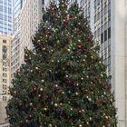 Frohe Weihnachten - Merry Christmas!