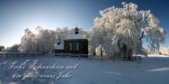 * Frohe Weihnachten! * Merry Christmas! *