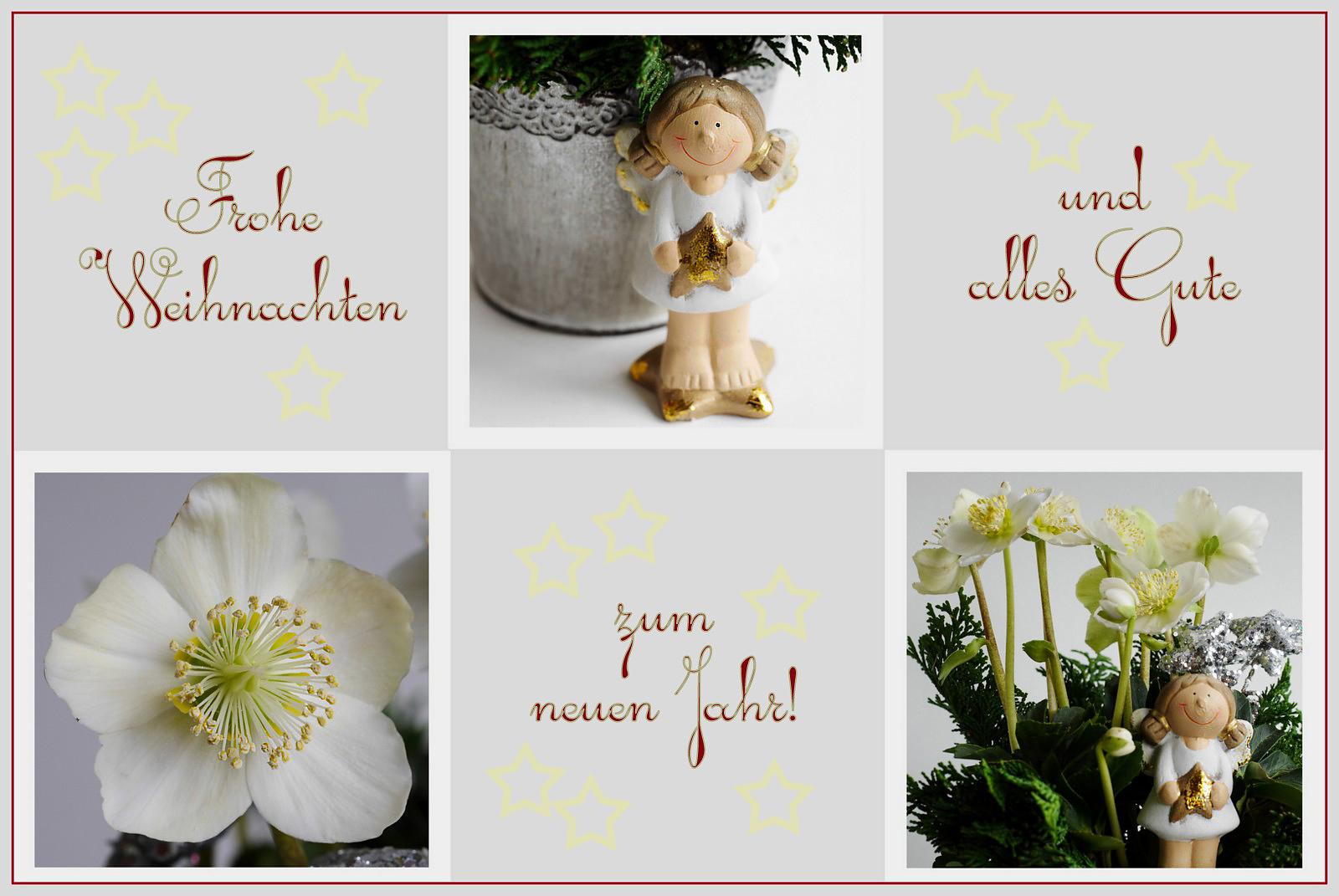 Frohe Weihnachten Und Alles Gute Im Neuen Jahr.Frohe Weihnachten Und Alles Gute Zum Neuen Jahr Foto Bild
