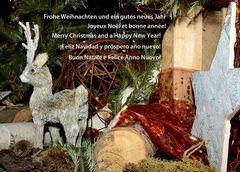 Frohe Weihnachten und ein gutes, gesundes Neues Jahr