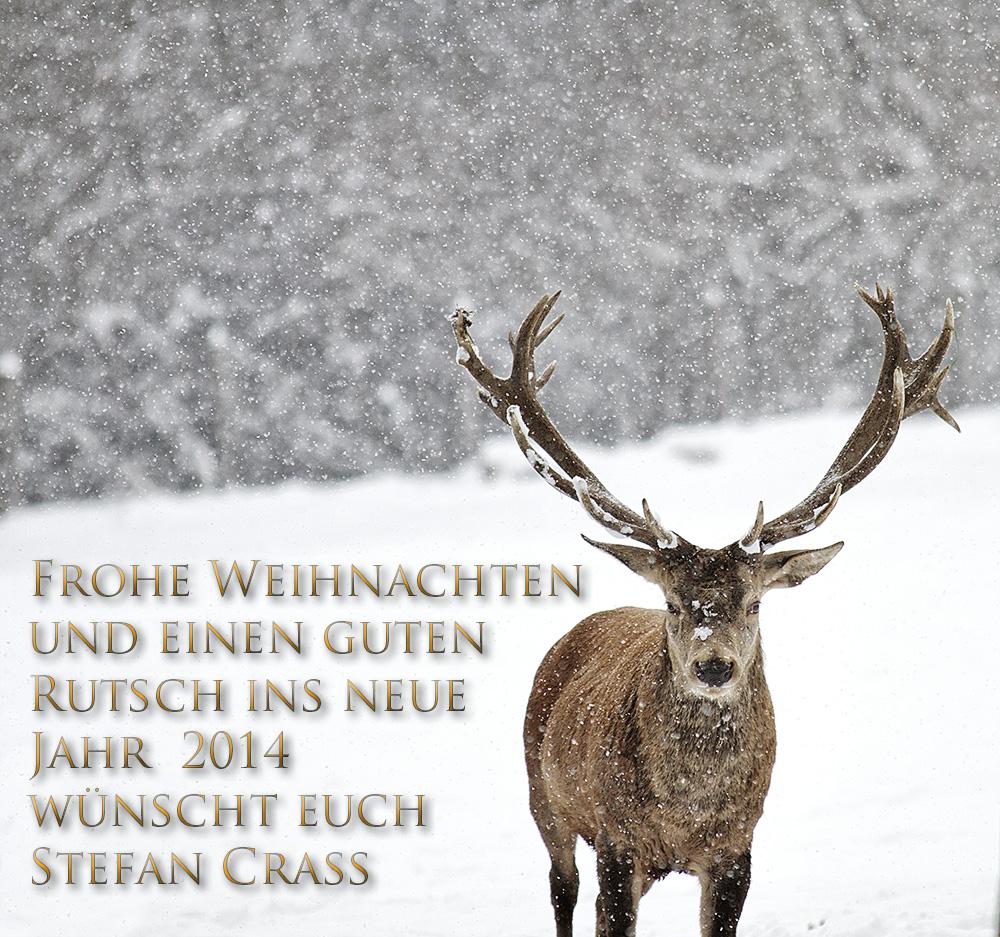 Frohe Weihnachten und einen guten Rutsch ins neue Jahr 2014 Foto ...