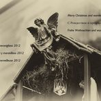 Frohe Weihnachten und wunderbare 2012