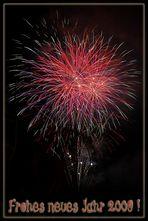 Frohes neues Jahr 2009 !