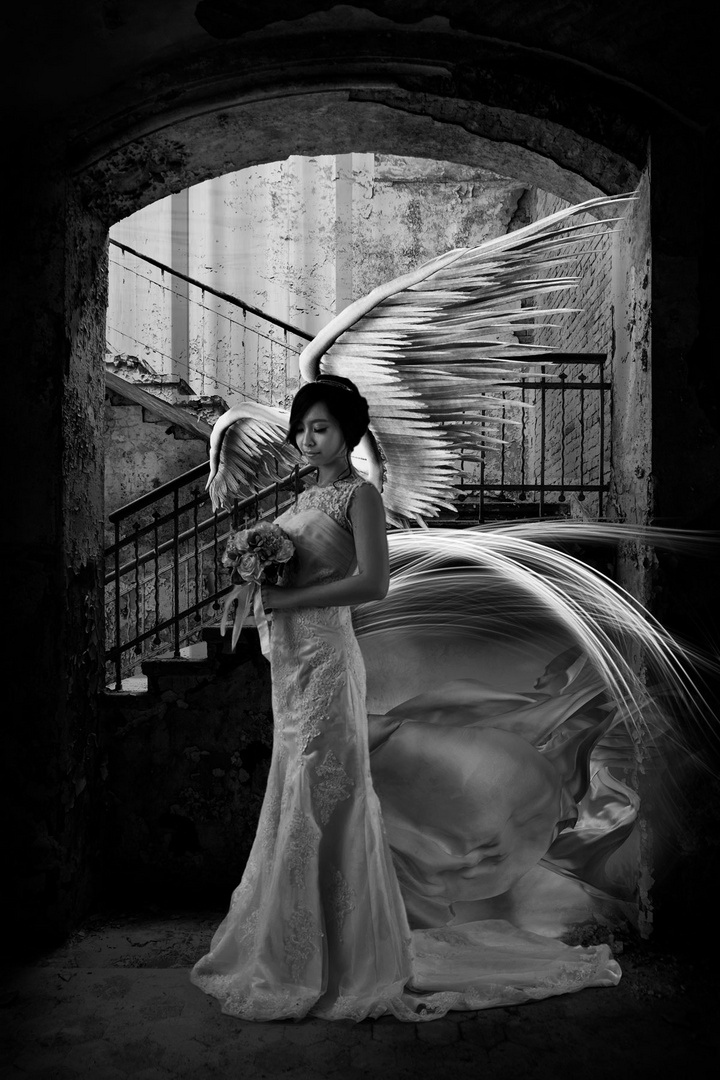 From Angels and Brides