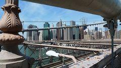 ... from Brooklyn Bridge