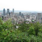 From Mount Royal#1