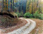 From Orma village towards Voras mountain. Macedonia, Greece