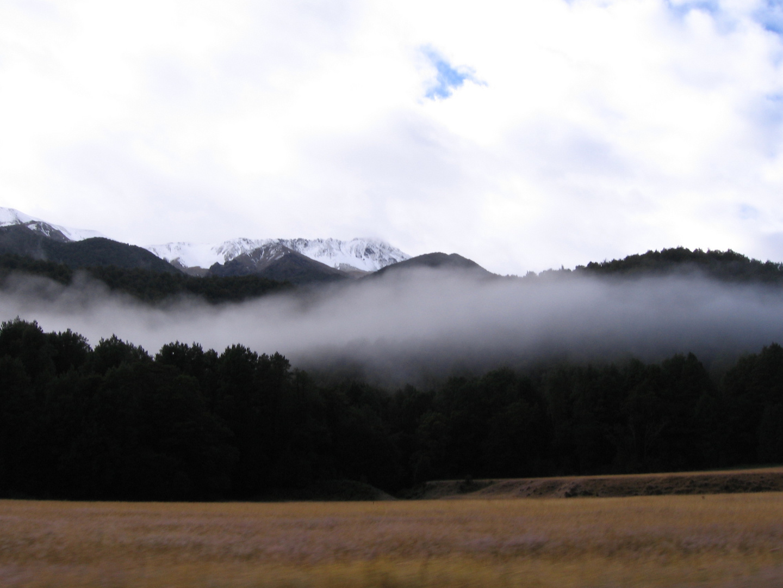 From Te Anau to Otago