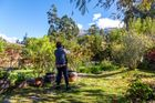 From the gardens of Perayoc #9