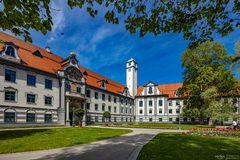 Fronhof