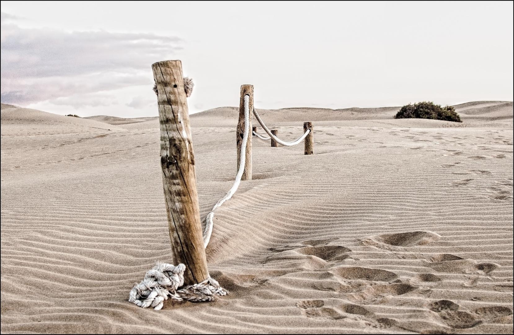 Fronteras in the Beach
