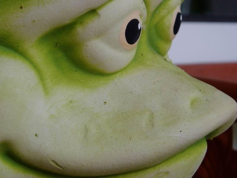 Froschface