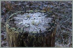 Frost im Engadin