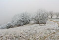 Frost und Nebel 1