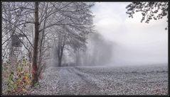 Frost und Nebel