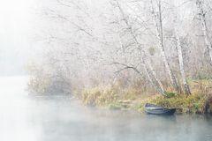 Frost und Nebel am Groschenwasser