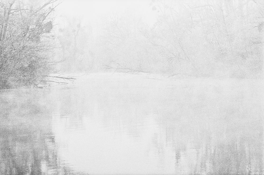 Frost und Nebel am Groschenwasser III