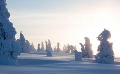 Frostige Versammlung
