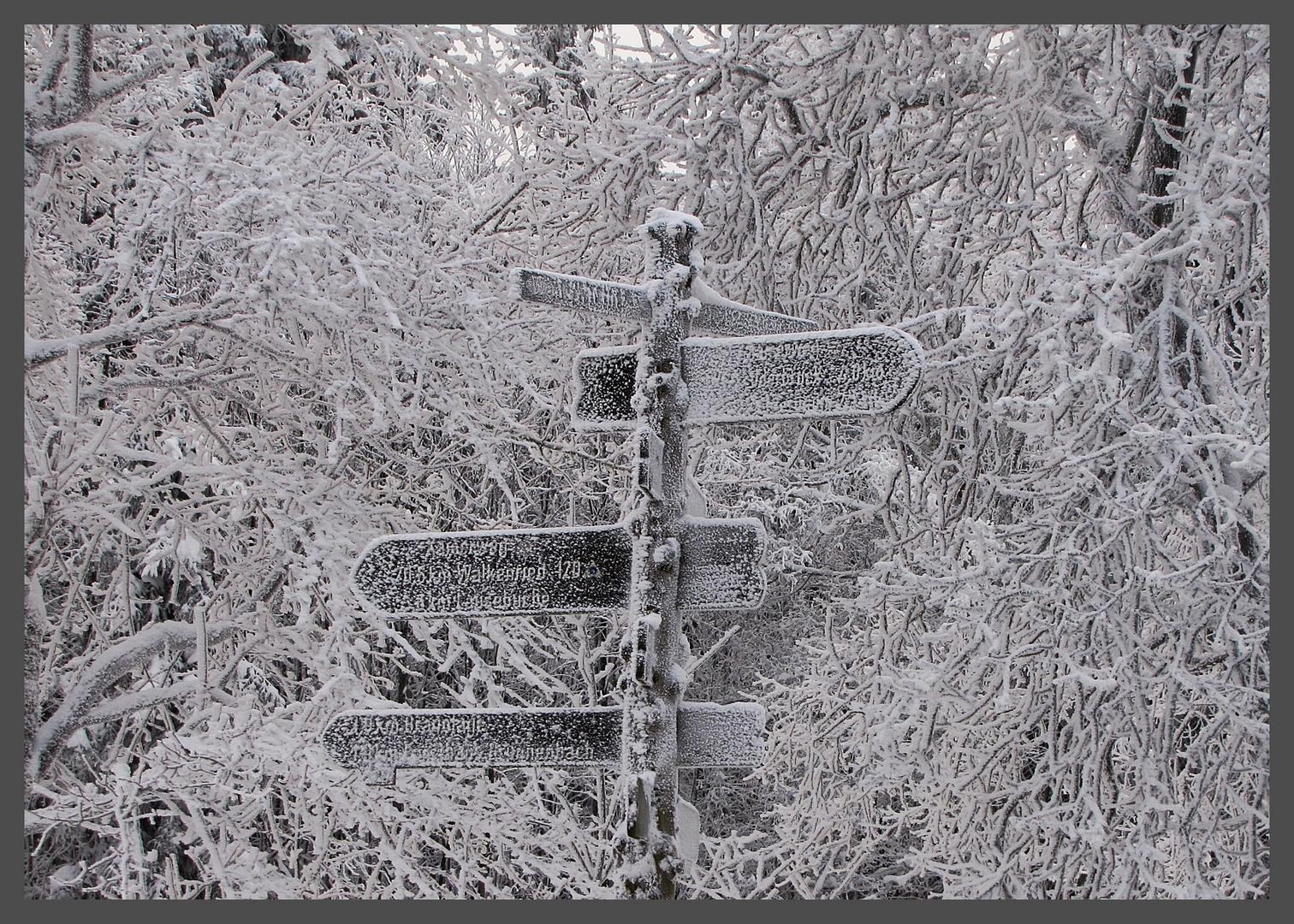 Frostige Wegweiser