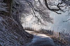 Frostige Zeiten_1