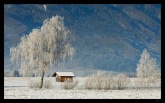 Frostiger Winter