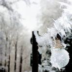 Frostspuren