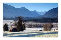 Frosty Morning - frostiger Morgen II