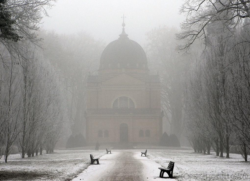 frosty veil